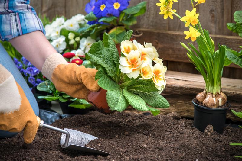 Home Garden Service