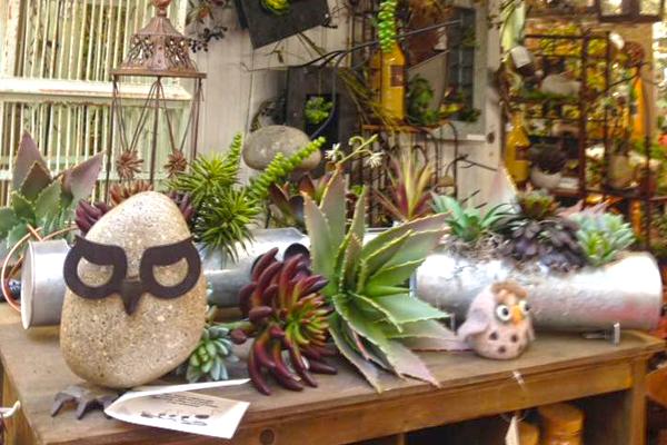 Stoneware & Permanent Plants