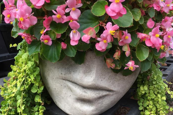 Planters that will make you smile