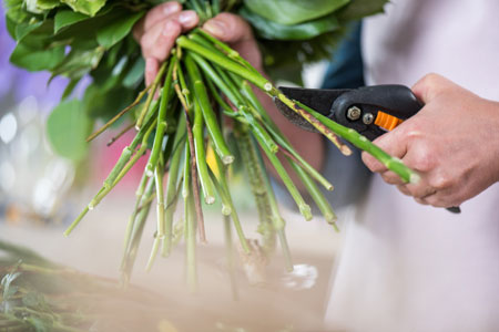 Cut stems at an angle
